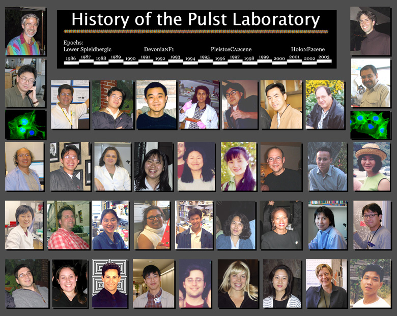 History of the Pulst Lab